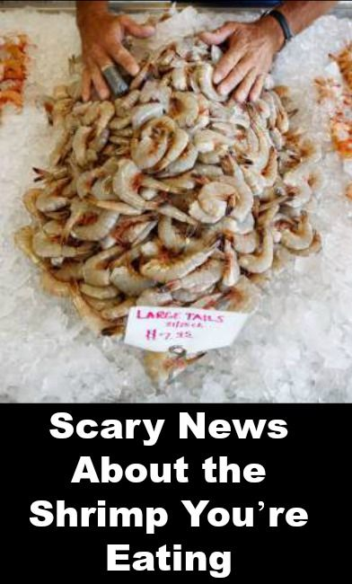 Scary News About the Shrimp You're Eating   http://positivemed.com/2014/12/02/scary-news-shrimp-youre-eating/