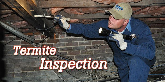 Termite Inspection at regular intervals is the only way to nip termite infestation in the bud. Also, eradication should be followed by installation of termite barriers.
