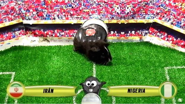 Brasil 2014: el gran Cuy Yimi tiene su favorito para el Irán vs. Nigeria (VIDEO) #Depor