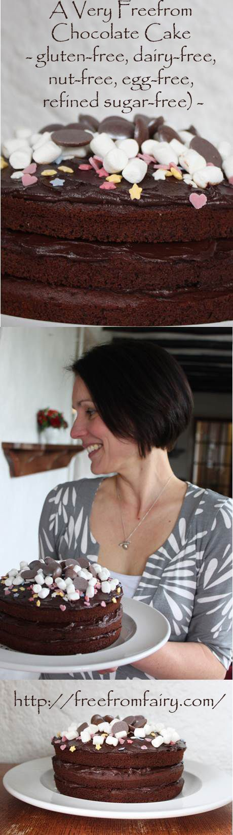 A very freefrom chocolate cake...glutenfree, dairyfree, eggfree, nutfree, soyafree, refined sugar free!