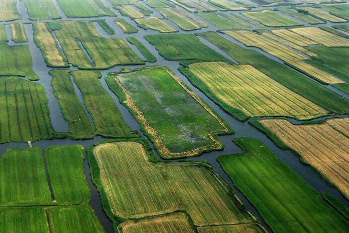 Het Twiske, the Netherlands
