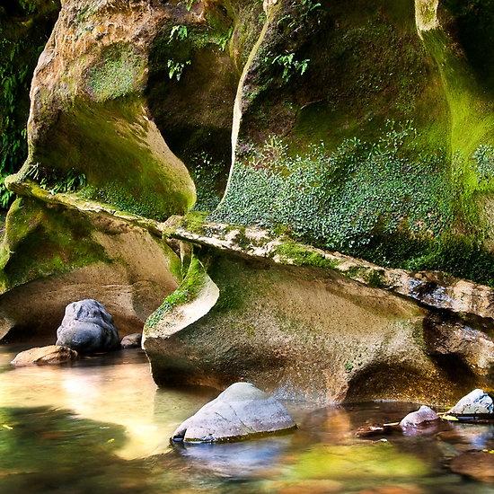 Patuna Gorge | Masterton
