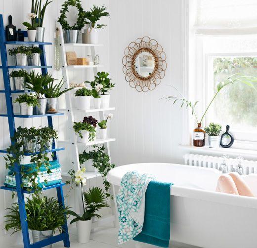 Pflanzen auf HJÄLMAREN Wandregal in verschiedenen Farben im Badezimmer. Zwei Wandregale nebeneinander schaffen quasi eine grüne Wand.