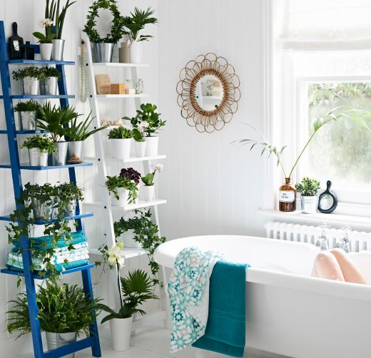 Adding plants in the bathroom brings an instant sanctuary feel. Ladders don't take up much space, so why not create more impact with two? Spray-painting one in a vibrant colour can bring real drama to a white scheme.   Choose plants that thrive in a steamy environment and play with different textures, leaf shapes or trailing plants, plus a few flowers to break up the green. Go for pots in a mixture of sizes and shapes, but stick to one or two colours to keep the look harmonious.