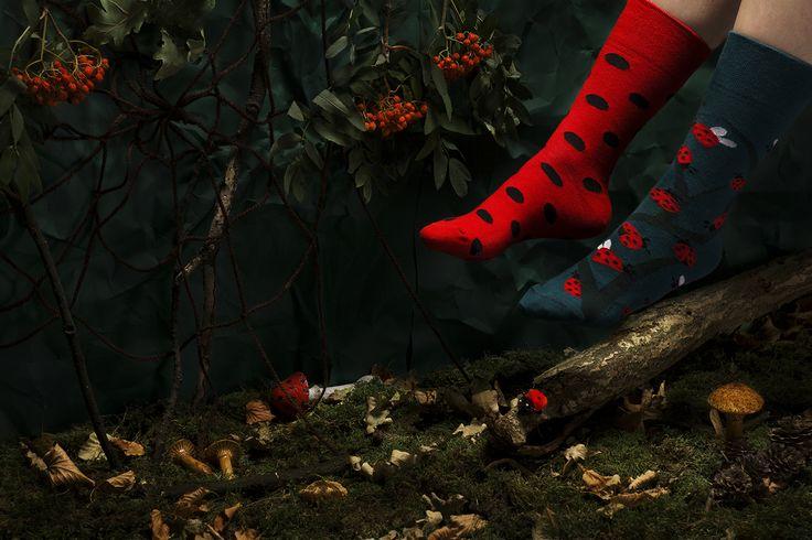 Dots & Bugs - socks by many mornings