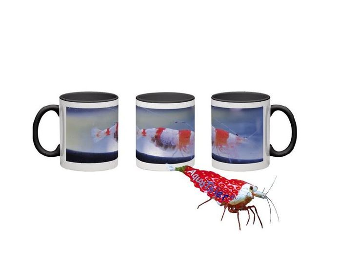 Red Bee - Garnelen Tasse - Deko -