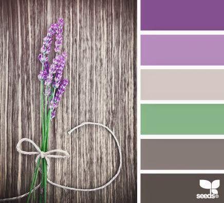 paletas de colores hoy el lila u