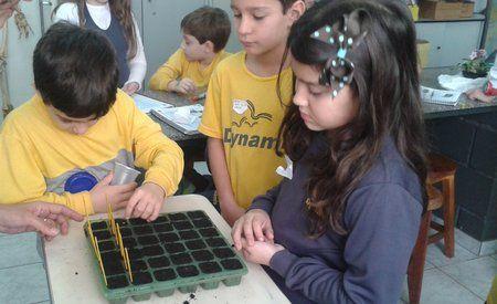 Colégio Dynamis | Alfabetização científica