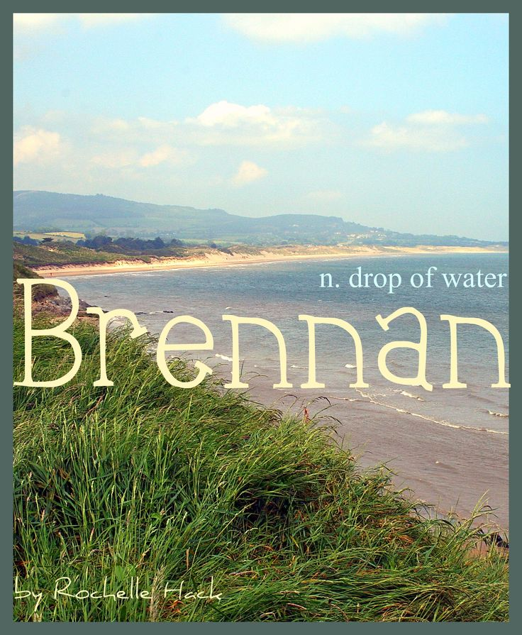 Baby Boy or Girl Name: Brennan. Meaning: Drop of Water. Origin: Irish; Gaelic. http://www.pinterest.com/vintagedaydream/baby-names/