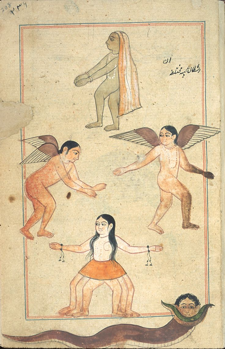 Illustrations from Marvels of Things Created and Miraculous Aspects of Things Existing (Ajā'ib al-makhlūqāt wa-gharā'ib al-mawjūdāt - كتاب عجائب المخلوقات وغرائب الموجودات) by Zakarīyā' ibn Muḥammad al-Qazwīnī, originally published in 1283. The illustrator, copyist and date of the edition are unknown. The nature of paper, script, ink, illumination, and illustrations suggest that it was produced in provincial Mughal India, possibly the Punjab, in the 17th century.