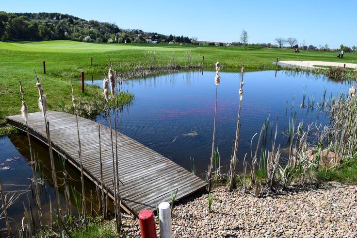 Golfpark Rosenhof - Leading Courses of Germany Kandidat  ... #golfpark #rosenhof