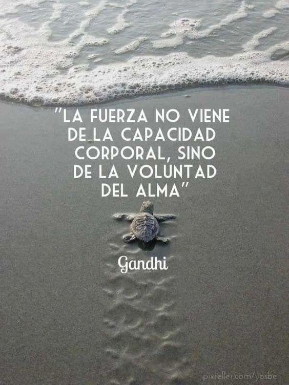 ... La fuerza no viene de la capacidad corporal, sino de la voluntad del alma. Gandhi.