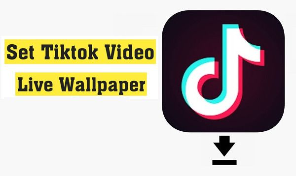 How To Convert Tiktok Video As A Live Wallpaper On Android Phone Live Wallpapers Wallpaper Converter
