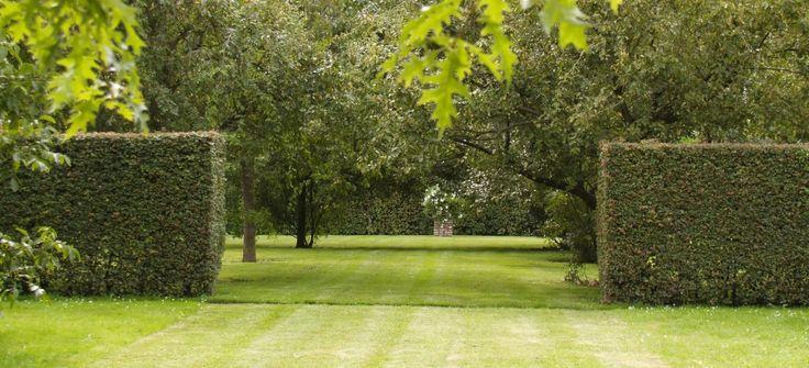 buro mien ruys - tuin & landschapsarchitekten - home