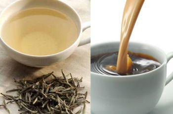 Így gyógyít a diólevél tea! - Szabad Föld Online
