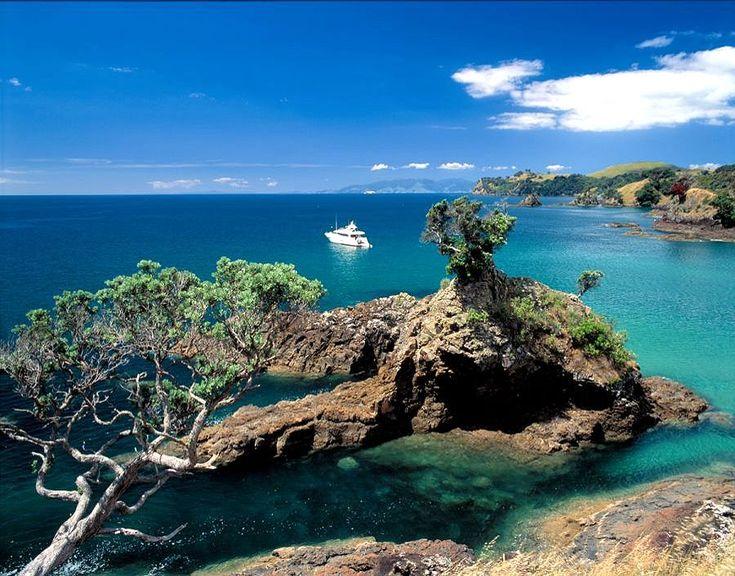 Waiheke Island #newzealandwalkingtours {#newzealandwalkingtrails#newzealandwalkingtracks}