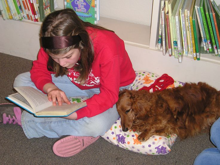 Therapy Dogs International - Tail Wagging Tutors, helping kids with learning disabilities enjoy reading more!