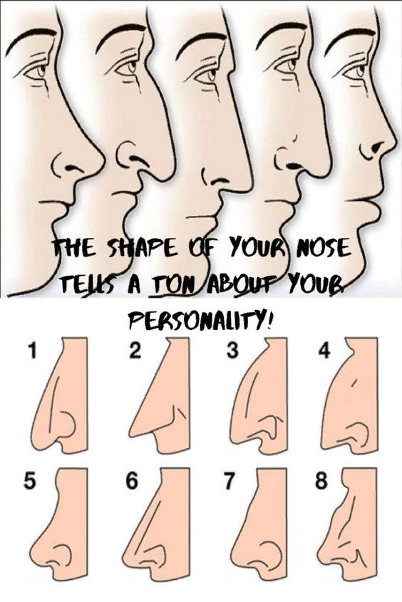 Let's Workout   The Shape Of Your Nose Tells A Ton About Your Personality!