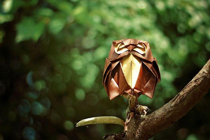 creativos-animales-origami-FoldedWilderness-02
