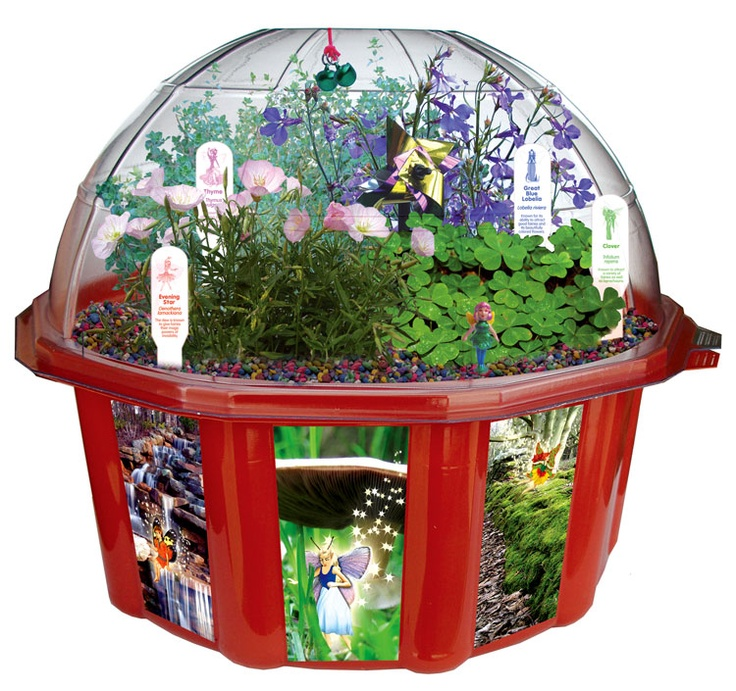 fairy terrarium
