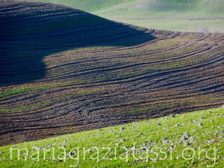 Maremma, Tuscany, Italy, Landscapes