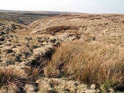 17d5cc2ec5ab993a2269173e108b99fc Saddleworth Moor Murders Map on glossop map, dartmoor map, lancashire map, yorkshire dales map, oldham map, forest of bowland map, long mynd map,