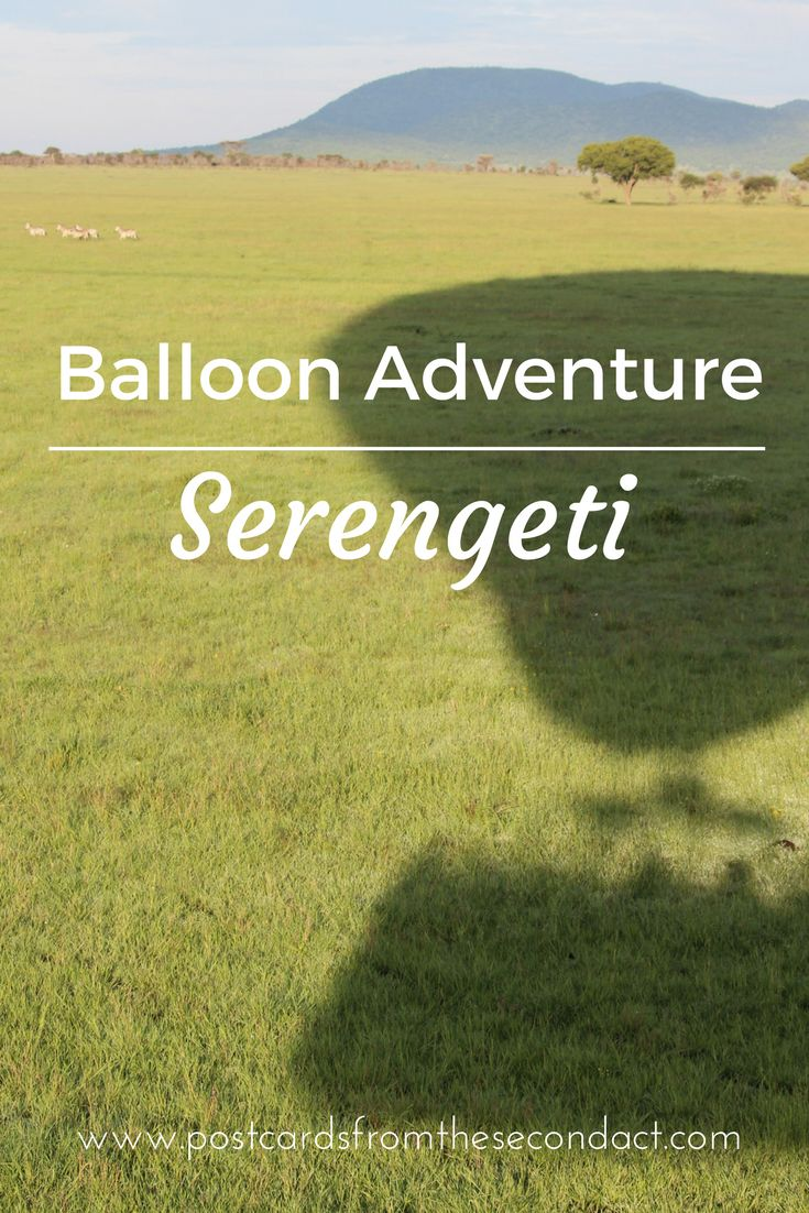 Explore the Serengeti from a hot air balloon