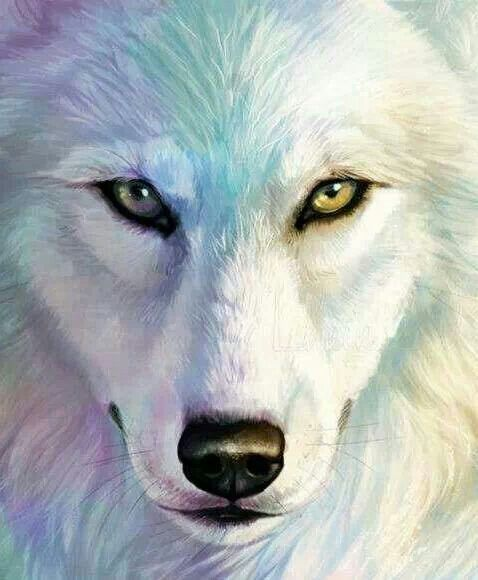 White Wolf Painting
