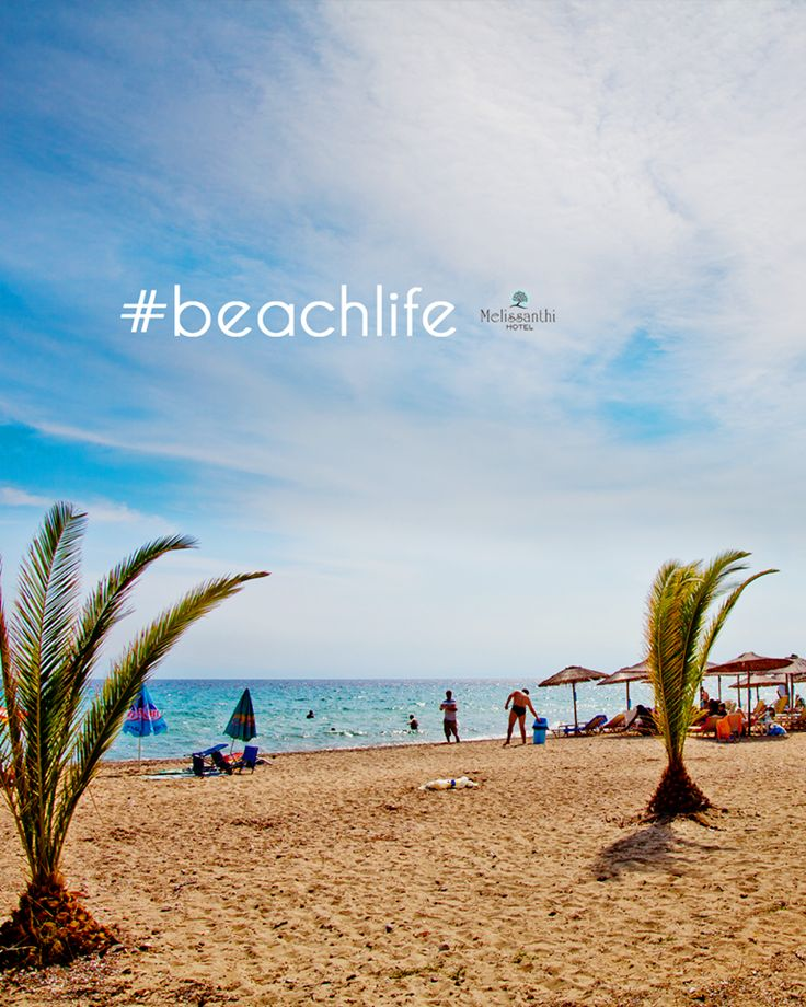 Beaches are everywhere in Halkidiki, all a short car ride away from our hotel. And they're all beautiful! Enjoy the #beachlife all day long and live your best summer (summer is still on here)! Ο Αύγουστος μπορεί να τελείωσε, αλλά το καλοκαίρι στη Χαλκιδική συνεχίζεται για λίγο ακόμα. Δεκάδες παραλίες σας περιμένουν γύρω από το ξενοδοχείο μας για να τις εξερευνήσετε και να τις απολαύσετε!