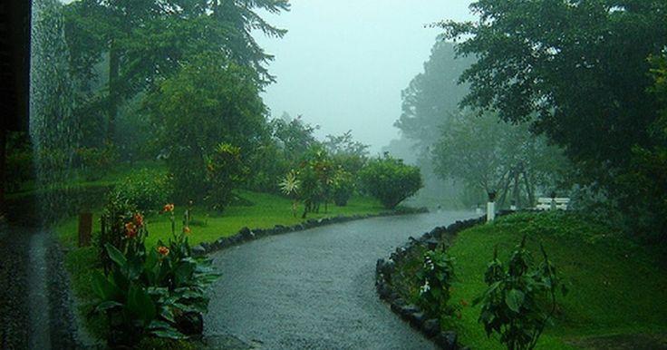 Como es el clima en Costa Rica el mes de junio. Los patrones climáticos en Costa Rica varían de región a región. Mientras muchos locales te dirán que junio es el mes que empieza la temporada de lluvia (también conocida entre la industria turística como la temporada verde), algunas áreas del país reciben mas precipitación que otras, y la geografía juega un papel importante en determinar las ...
