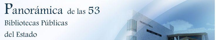 Es una referencia informativa, basada en datos estadísticos, que da cuenta de cómo crece, funciona, y sirve al ciudadano esta red bibliotecaria estatal, integrada por estos 53 centros de especial relevancia para el desarrollo cultural del país y el acceso a la información de los ciudadanos. Son, por lo general, las bibliotecas más importantes de las ciudades en que se ubican y su presencia en el panorama de la actividad bibliotecaria nacional está reconocida.