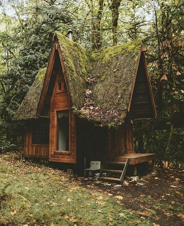 Beautiful hidden cottage... Would LOVE this solitude!