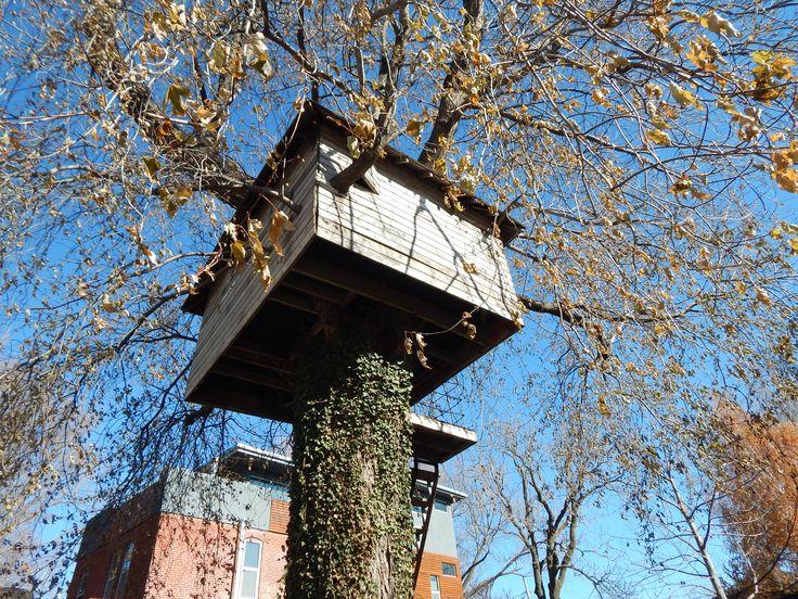 Wenn Sie in Ihrem Garten ein Baumhaus bauen, können Sie Ihren Kindern gleichzeitig die Liebe zur Natur nahe bringen. Natürlich bauen Sie Ihr Baumhaus in einem Baum. Der Boden des Baumhauses dient gleichzeitig als Stützrahmen. Das Baumhaus besitzt eine Terrasse und wird über eine feste Treppe, eine Steigleiter oder eine Strickleiter erreicht. #Nature #Children #Grandchildren