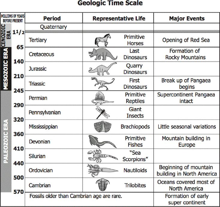 Geologic Time Scale Bio Worksheets 6th Grade Science