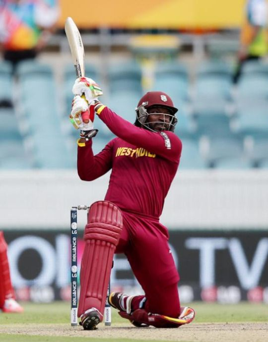Chris Gayle set the World Cup alight with a record-breaking 215 against Zimbabwe today.