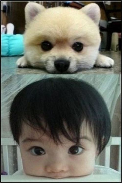 Cute baby and puppy love how dark the babys eyes are I ...