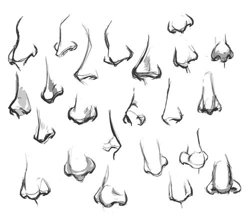 Character Design Noses : Best images about drawing nose on pinterest sketching