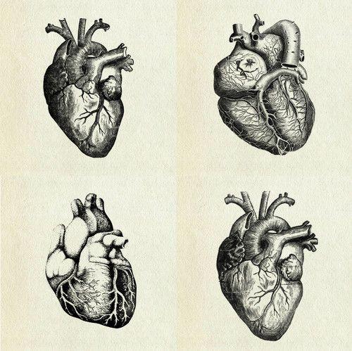 Para bombear o nosso sangue é para que serve o coração!