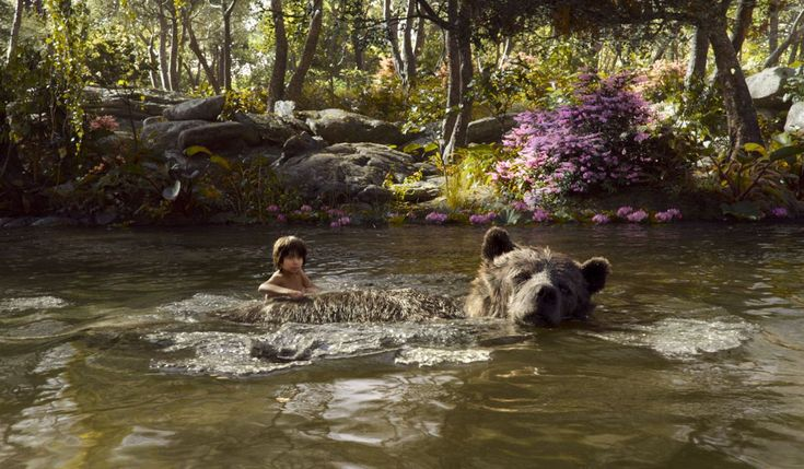 Le Livre de la jungle : Photo Neel Sethi