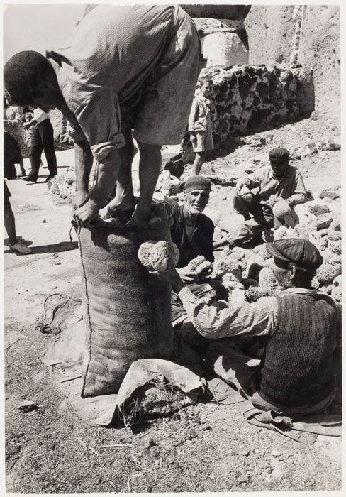 [Men putting sponges into bags, Santorini, Greece] 1951. Copyright © David Seymour/Magnum Photos