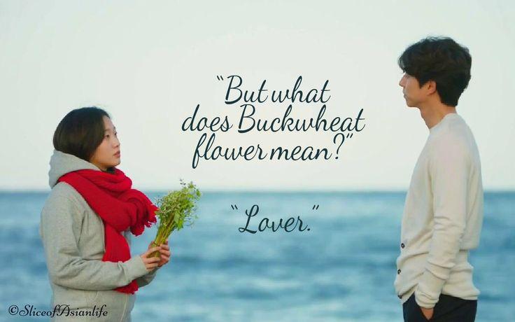 "But what does Buckwheat flower mean? ""Lover"" - Goblin Korean drama"