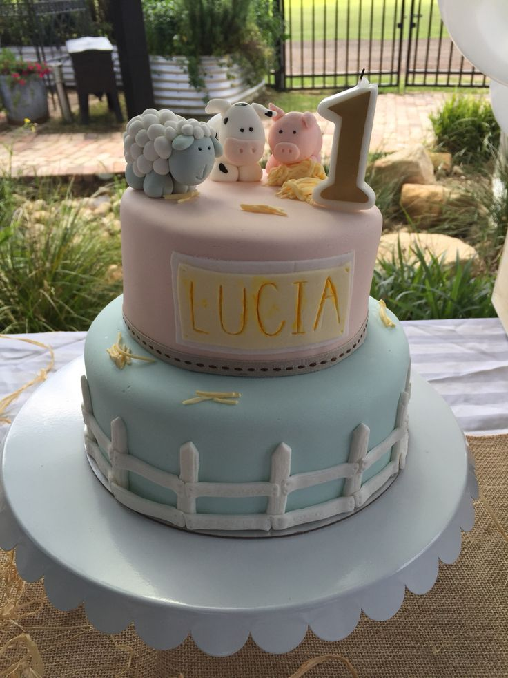 Farm cake for a first birthday girl, shabby chic theme.