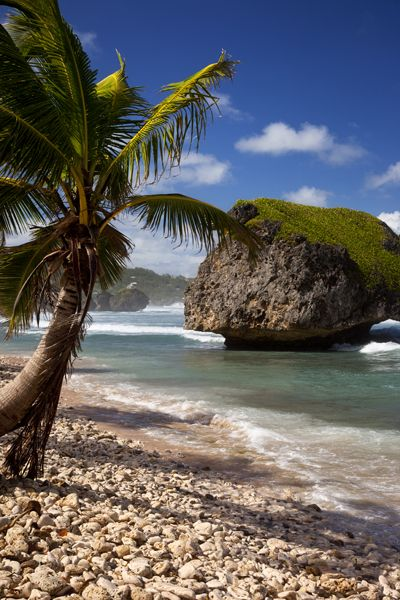 Bathsheba Beach and Rock, Barbados, West Indies, this would make a great subject for a painting.