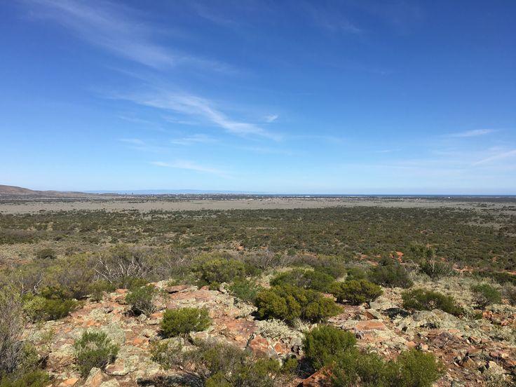 Into the South Australian Wild
