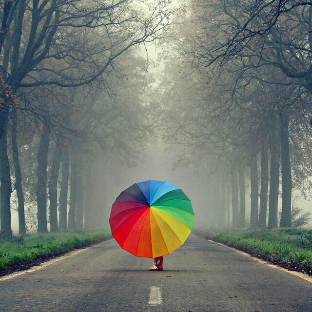 Some Sunshine on Rainy DayPhotos, Colors Trends, The Roads, Walks, Rainbows Colors, Beautiful, Colors Wheels, Grey, Umbrellas Art