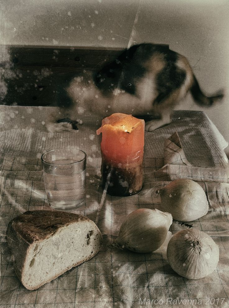 Onion  bread  and... cat - Sometimes in still life it is easy to insert an element, but a cat It becomes a bit more complicated