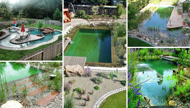 Summer Is That Great Time To Have Fun By The Pool And Barbecue Area It Wouldn T Be Summer Without A Natural Swimming Pools Natural Pool Natural Swimming Ponds