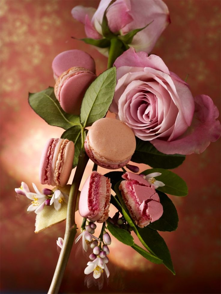 MACARON JARDIN ORIENTAL BY PIERRE HERMÉ (Fleur d'Oranger, Rose & Gingembre) #herme #macaron #jardins #pastry #gastronomy #macaronsetgourmandises