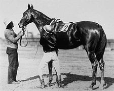 Agile | Winner of the 30th Kentucky Derby | 1905 | Jockey: J. Martin | 3-Horse Field | $4,850 prize
