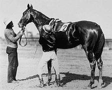 Agile | Winner of the 30th Kentucky Derby | 1905 | Jockey: J. Martin | 3-Horse Field | $4,850 prize